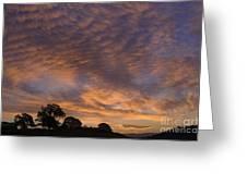 California Oaks And Sunrise Greeting Card