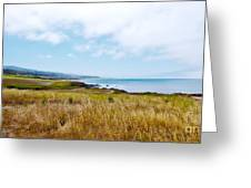 California Pacific Coast Highway - Forever Summer  Greeting Card