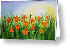 California Poppies Field Greeting Card