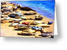 California Sunbathers . Harbor Seals Greeting Card by Wingsdomain Art and Photography