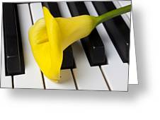 Calla Lily On Keyboard Greeting Card