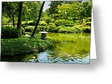 Calming Waters Greeting Card
