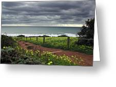 Cambria Trail Greeting Card