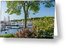 Camden Spring Greeting Card by Susan Cole Kelly