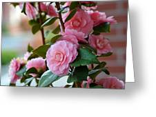 Camellia Floral Greeting Card
