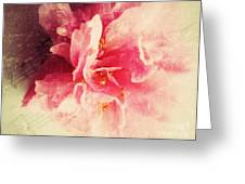 Camellia Flower With Music Greeting Card