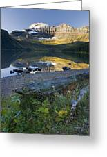 Cameron Lake, Alberta, Canada Greeting Card