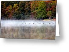 Canada Geese In Georgia... Greeting Card