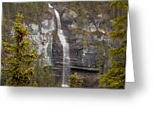 Canadian Water Fall 1908 Greeting Card