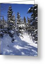 Canadian Winter Scene Greeting Card