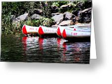Canoe Rentals On The St Croix Greeting Card