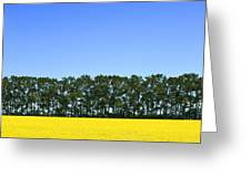 Canola Field And Trees Greeting Card