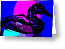Canvasback Floating At Sunrise Greeting Card