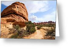 Canyonlands Needles Trail Greeting Card