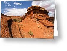 Canyonlands Textures Greeting Card