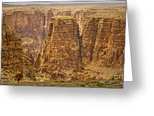 Canyons  Greeting Card
