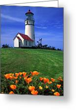 Cape Blanco Lighthouse Oregon Greeting Card