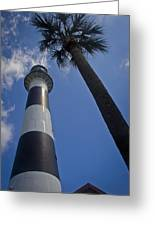 Cape Canaveral Lighthouse With Palm Tree Greeting Card
