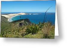 Cape Reinga - North Island Greeting Card