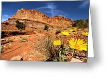 Capitol Flower Garden Greeting Card