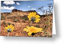 Capitol Flowers Greeting Card