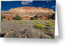 Capitol Reef Autumn Wildflowers Greeting Card