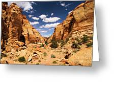 Capitol Reef Cohab Canyon Greeting Card