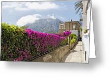 Capri Alleyway Greeting Card