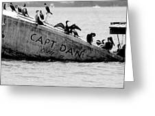 Capt. Dan  Greeting Card