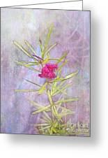 Captured Blossom Greeting Card