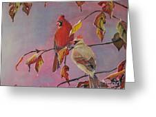 Cardinals In Falls Greeting Card