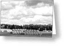 Cariboo Country Hay Bales Greeting Card