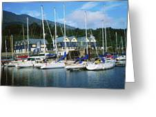 Carlingford Marina, Carlingford, County Greeting Card