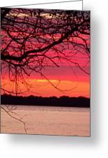 Carolina Sky Greeting Card