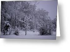 Carolina Snowfall Greeting Card