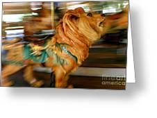 Carousel Lion Greeting Card