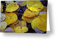 Carpet Of Gold Greeting Card