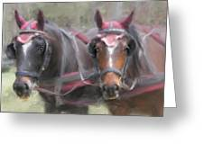 Carriage Horses Pleasure Pair Greeting Card