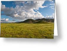 Carrizo Plain National Monument Greeting Card
