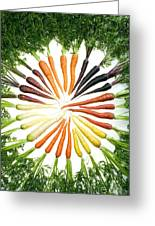 Carrot Pigmentation Variation Greeting Card by Science Source