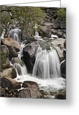 Cascade Creek Cascade Greeting Card