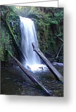 Rainforest Waterfall Cascades Greeting Card