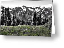 Cascade Range Meadow Greeting Card