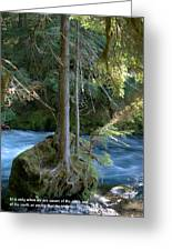 Cascade Rapids Greeting Card