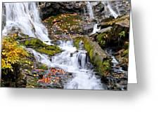 Cascades At Mingo Falls Greeting Card