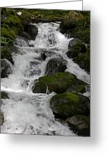 Cascades Below Greeting Card