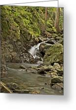 Cascades Happy Trail 9128 Greeting Card