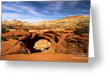 Cassidy Arch Greeting Card