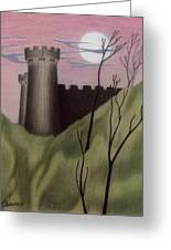 Castle By Moonlight Greeting Card