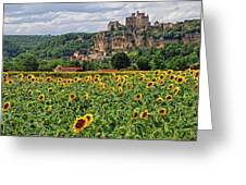 Castle In Dordogne Region France Greeting Card